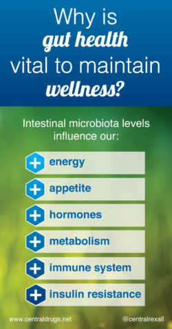 Gut Health and Wellness